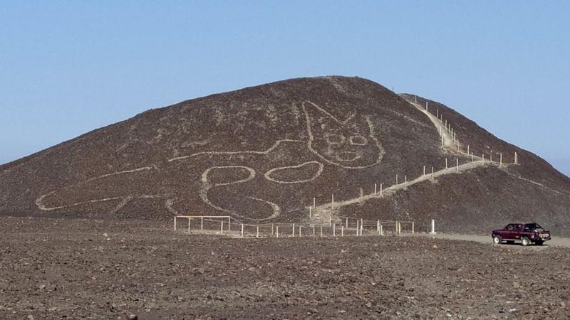 पेरूको मरुभूमिमा बिरालोको दुई हजार वर्ष पुरानो रेखाचित्र फेला पर्यो