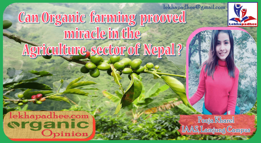 Can Organic farming prooved miracle in the agriculture sector of Nepal?