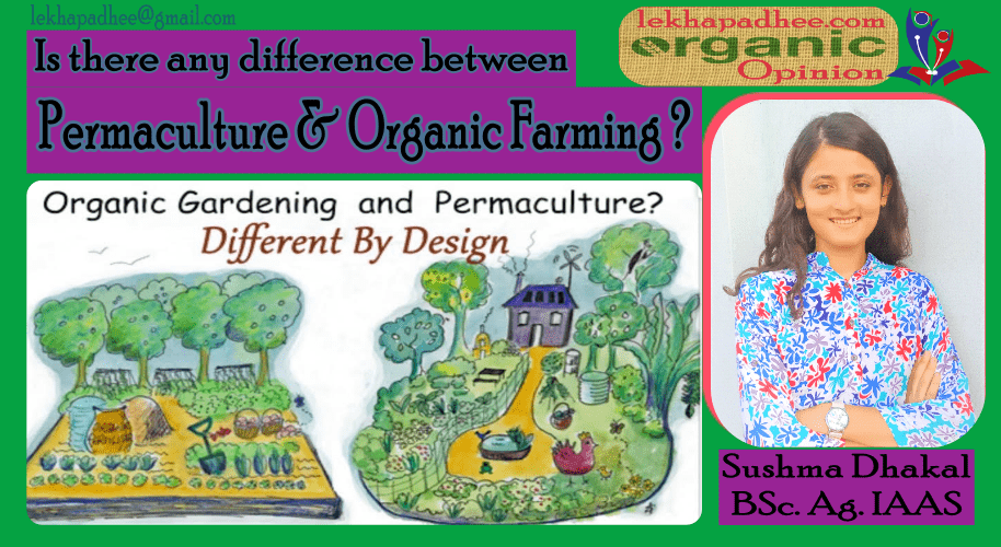 IS THERE ANY DIFFERENCE BETWEEN PERMACULTURE AND ORGANIC FARMING?