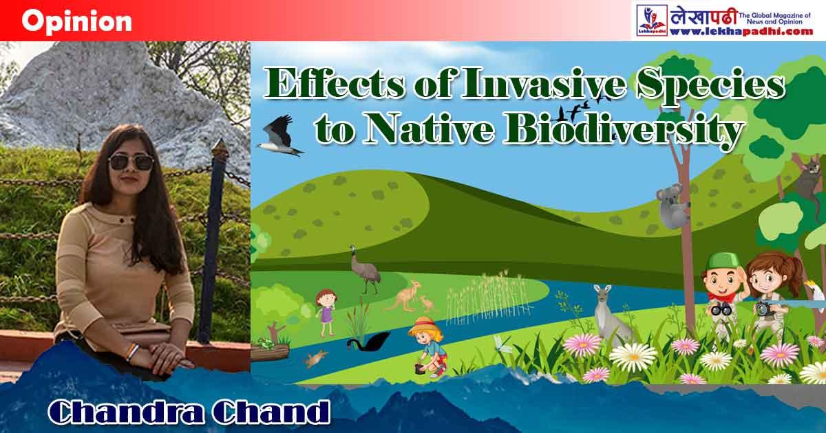 Effects of invasive species to native biodiversity