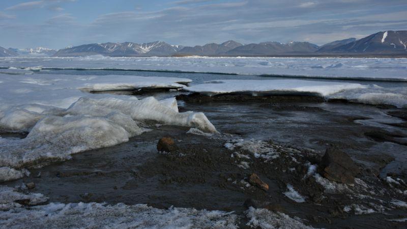 पृथ्वीको सबैभन्दा उत्तरमा रहेको टापु पत्ता लगाएको वैज्ञानिकहरूको दाबी
