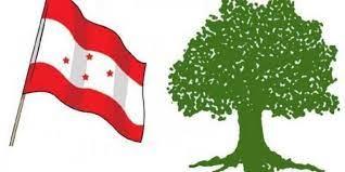कांग्रेसका वडाअधिवेशन ३५ जिल्लामा सम्पन्न